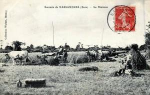 nassandre-6ok-300x191