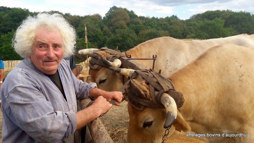 fête  2018 de la vache Nantaise (109)