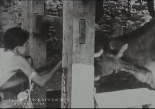 ferrage 1950 ciné toulouse