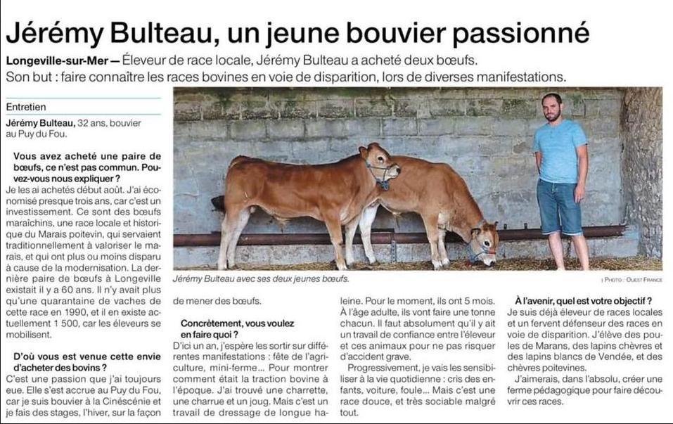 article boeufs jérémy bulteau ouest france