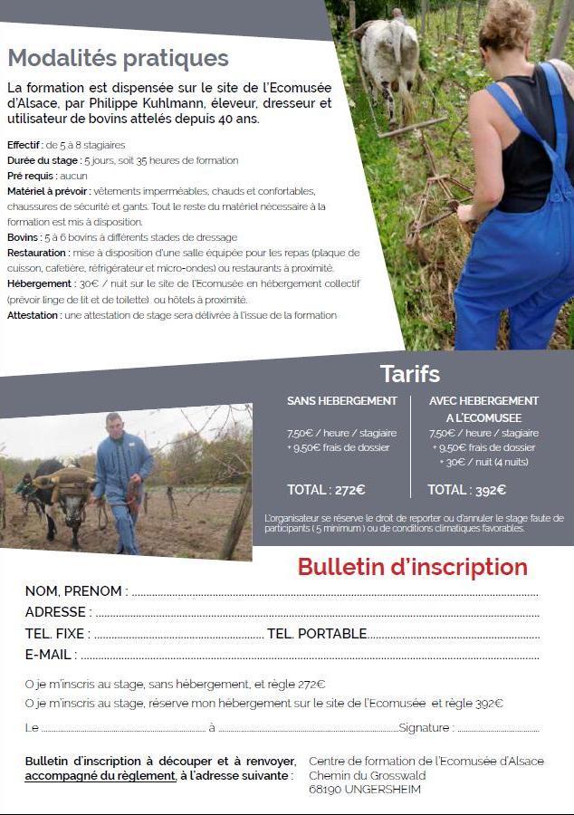 formation TB EMA mars 2020 2